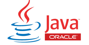 summer training java