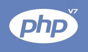 summer training php